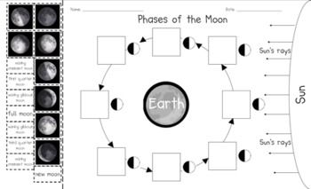Phases of the Moon Cut...
