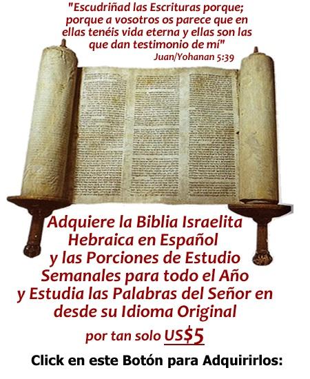 Ya está Disponible la Biblia Mesianica Israelita Hebraica en Español y las Porciones de Estudio Semanal para todo un año. Lee las Palabras del Señor desde textos restaurados hebraicos y recibe mayor bendición.