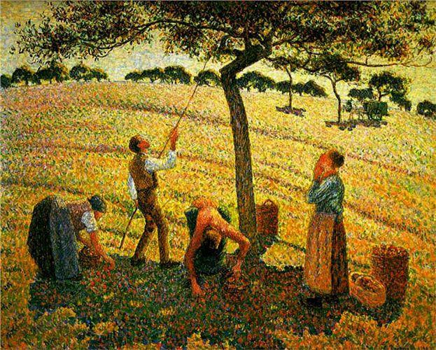 Камиль Писсарро. «Сбор яблок».