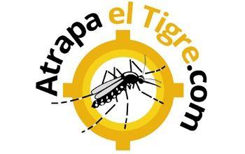 Una aplicación para móviles ayuda a detectar al mosquito tigre