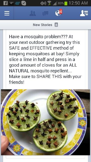 An all natural Mosquito repellent for your next BBQ!   http://freesamples.us/