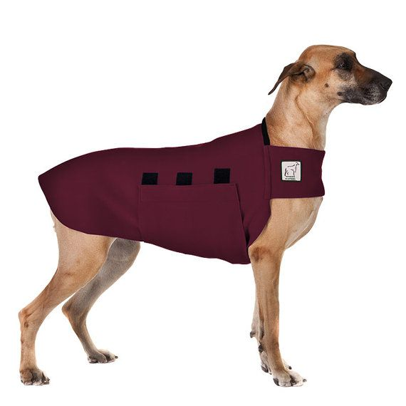 GREAT DANE Tummy Warmer, Dog Clothing, Fleece Dog Coat, Dog Sweater