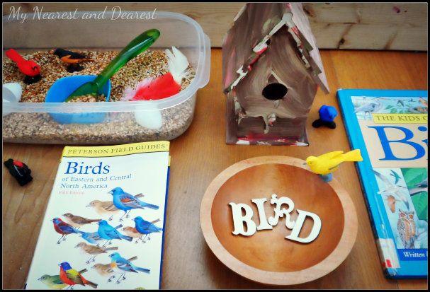 Bird Themed Sensory Bin from My Nearest and Dearest