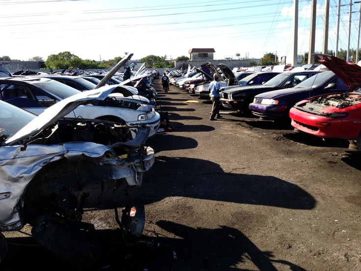 Lots of people at the junk yard