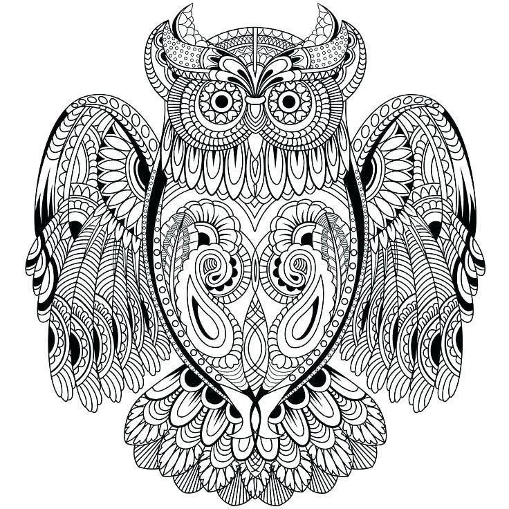 Owl Coloring Pages For Adults Printable Owl Coloring Pages Elephant Coloring Page Coloring Pages