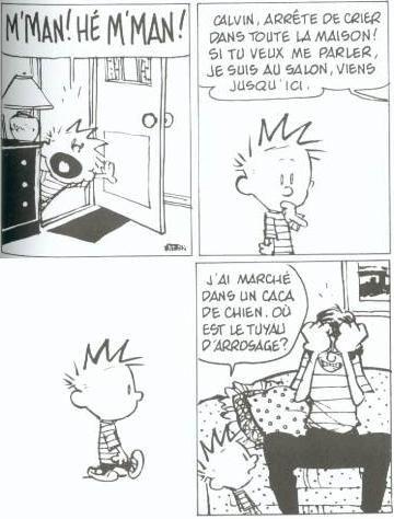 Petits soucis connus des amoureux des chiens et des autres aussi ... / Calvin and Hobbes.