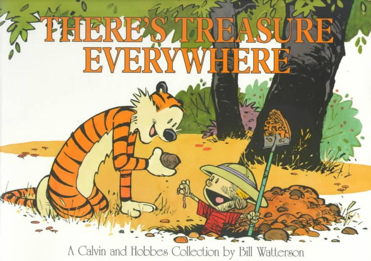 It's not often you come across a work that is the absolute pinnacle of its art form. Calvin and Hobbes is one.