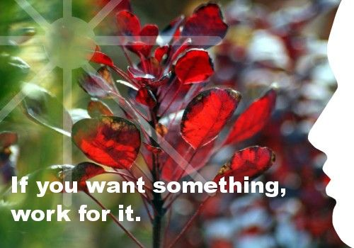 Mijn inspiratie: If you want something, work for it.