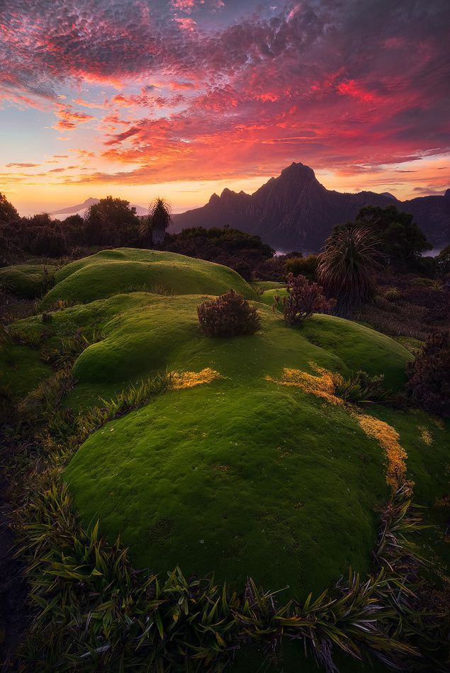 ~~Blazing Inferno | sunrise, South-West National Park, Tasmania, Australia | by Dylan Gehlken~~