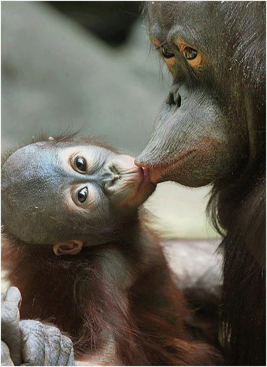 Motherly Love <3