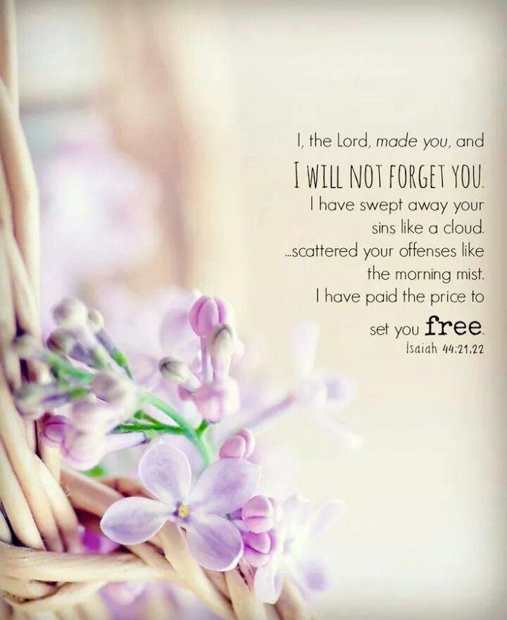 Jesaja 44 : 21 , 22