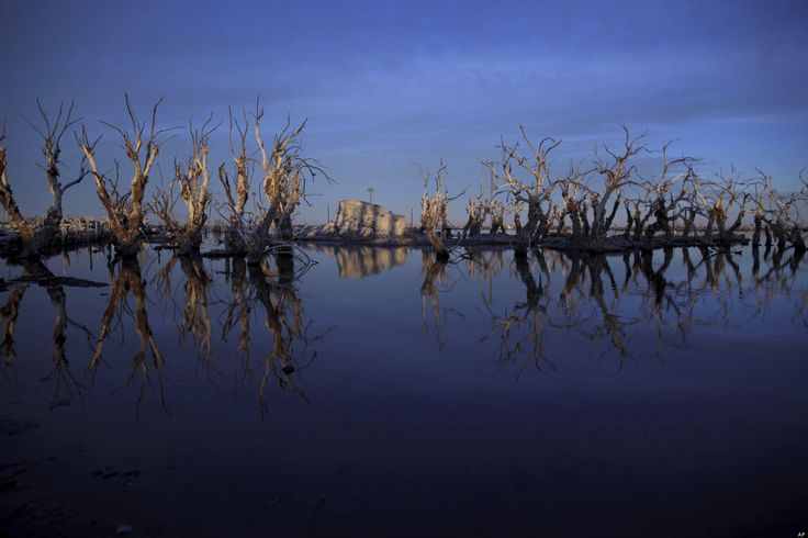 In this May 7, 2013 photo, trees are reflected in water in Epecuen, a village that once was submerged in water in Argentina. (AP Photo/Natacha Pisarenko).