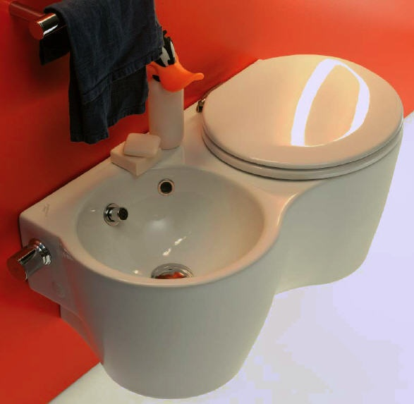 Ideal Standard Small+ Back to Wall WC, Toilet. The toilet seat, a toilet roll holder, and chrome ...