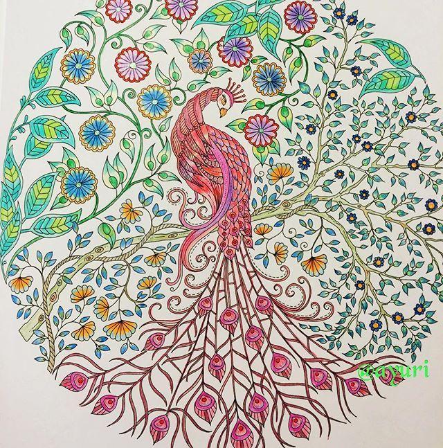 子どもの頃、遊びに行った初島に孔雀がたくさんいて、お弁当広げる私達の周りで羽を広げていたのを思い出しながら、あれは放し飼いだったのかという疑問が浮かびました。疑惑の赤い孔雀です。ご存知の方いらっしゃらなお‥ですよね。昭和の時代です #adultcoloringbook #colorful #coloringbook #color #colors #coloringforadults #adultcoloring #peacock #secretgarden #secretgardencoloringbook #ひみつの花園 #大人の塗り絵 #塗り絵 #コロリアージュ #初島