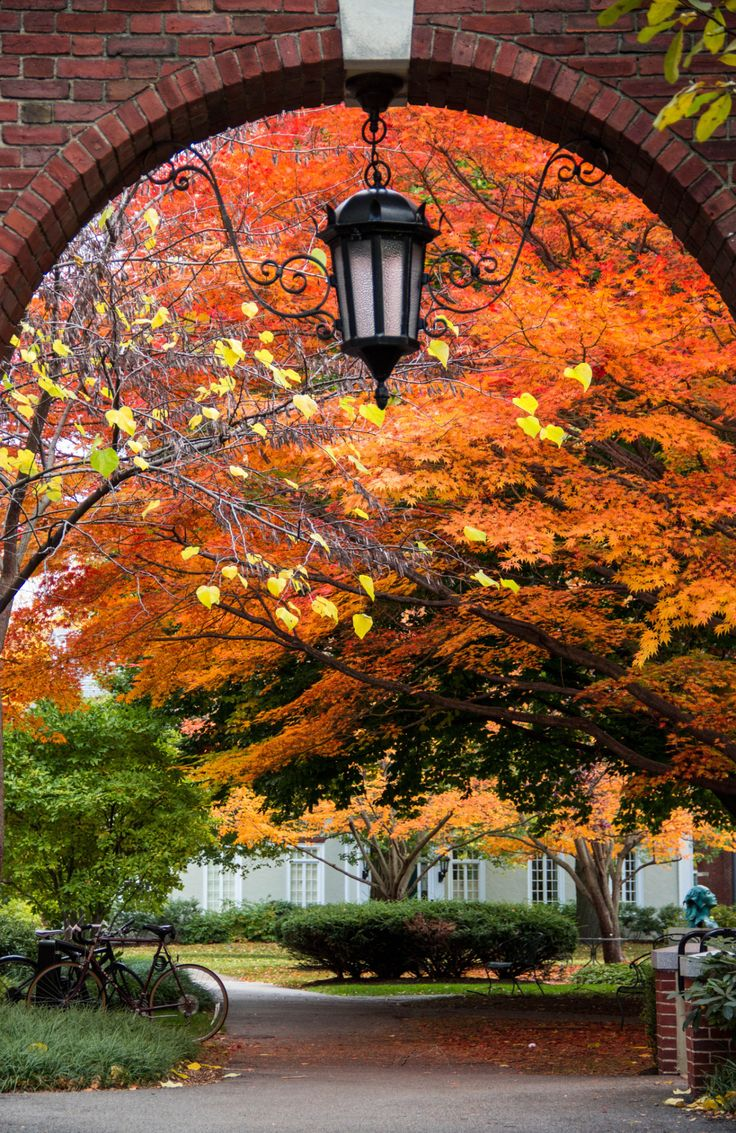 The Amazing Autumn at Cambridge, Boston by Hongzi Ma (exact location on the source) Travel Gurus - Follow for more Beutiful Photographies!