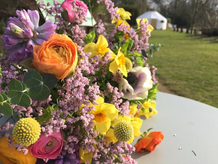 Spring Flowers, Sunshine & a Yurt!