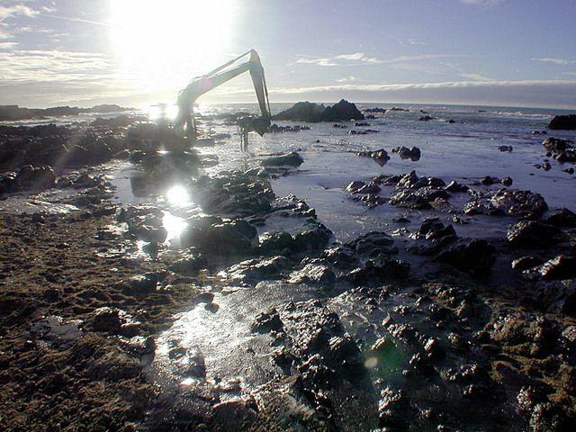 Whatsupic - La Marée Noire du Golfe du Mexique Associée à des Maladies chez les Dauphins http://fr.whatsupic.com/nouvelles-politiques-mexique/1387960369.html