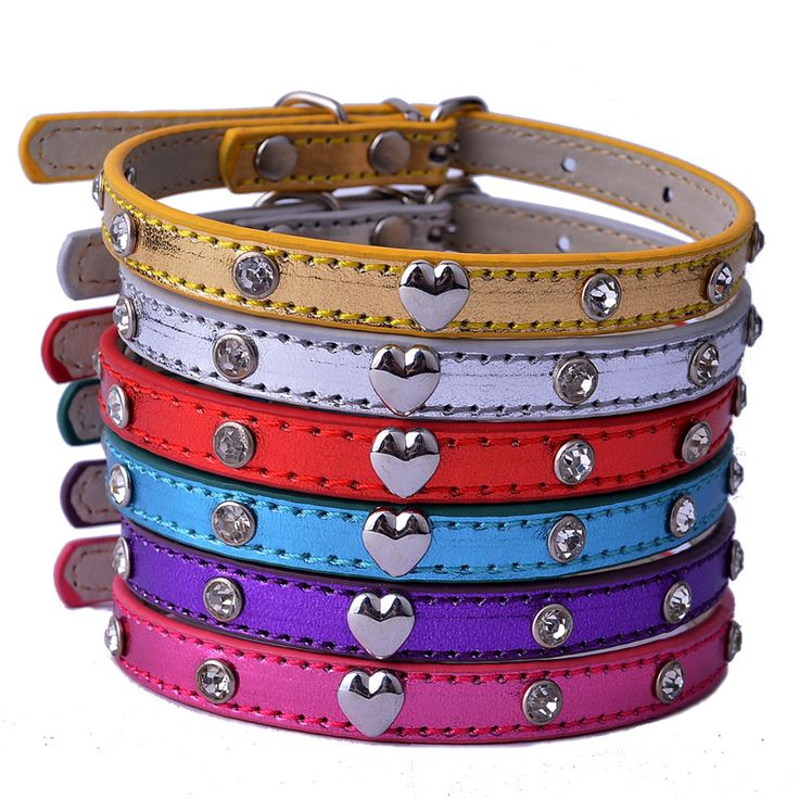 Crystal Studded Dog Collar Heart Shaped accessories Adjustable Leather Collar Puppy Small Pet Supplies Red Pink PurpleDeep discounts on over 300 products that enhance your life from day to day! Items for men and women of all ages, also teenagers. Take a look at our #jewelry #handbags #outerwear #electronicaccessories #watches #umbrellas #gpspettracker  #Songbirddeals #sunglasses #Purses