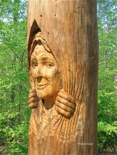 Tree Stump Carving of Fairies | Woman and raccoon …