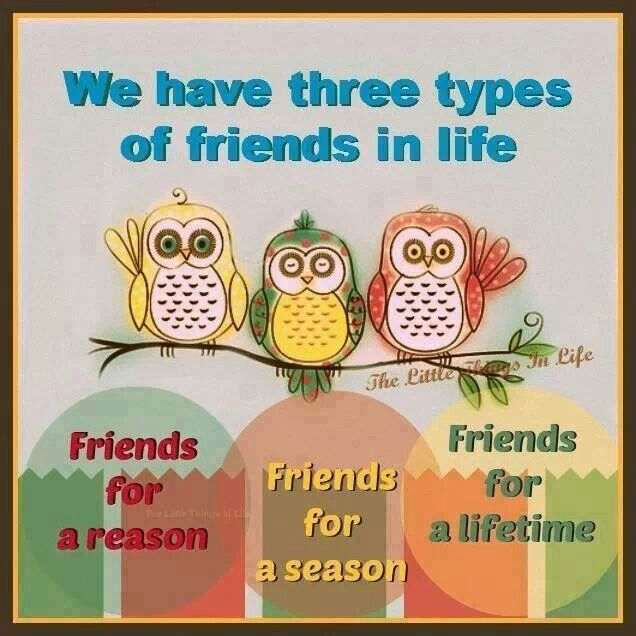 best lifetime friends quotes ideas  we have 3 types of friends in life friends for a reason friends for a