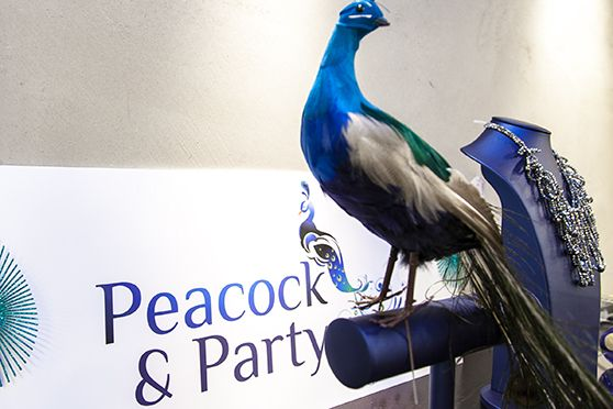 Lancering van Peacock & Party @ Rob Peetoom in Amsterdam