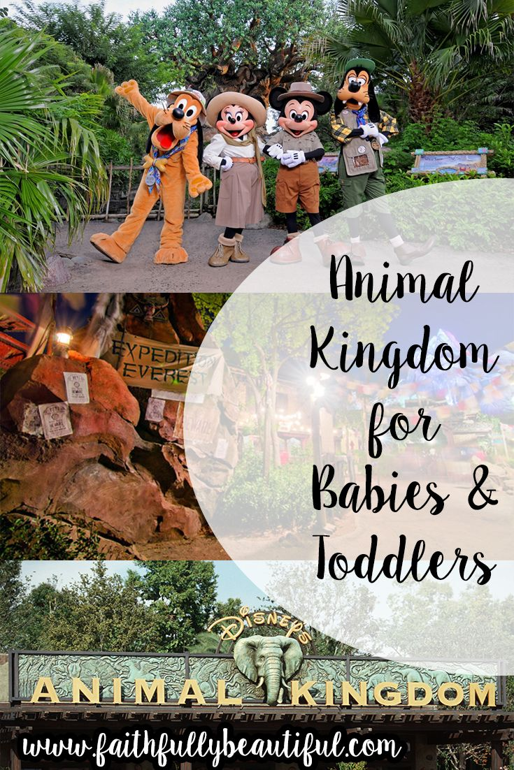 Bringing your baby or toddler to Animal Kingdom / Walt Disney World? Check out…
