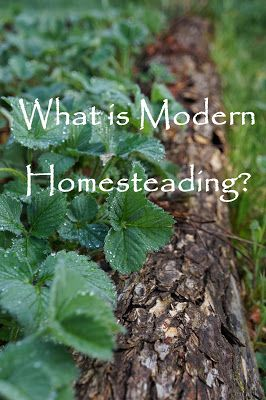 The Backyard Farming Connection: What is Modern Homesteading?