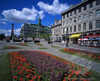 Gardens at Jacques Cartier Place; Old Montreal
