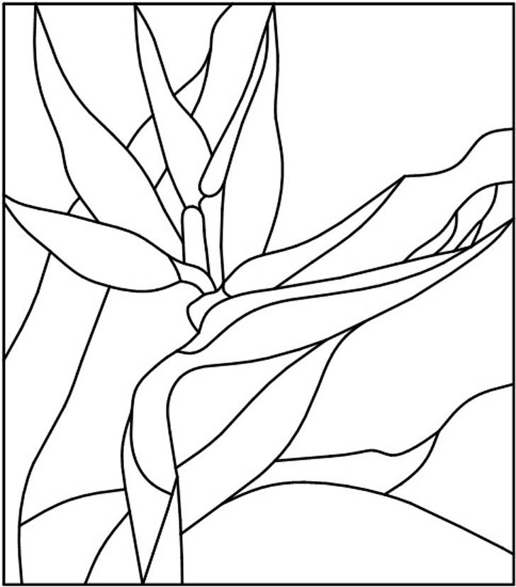 Popular Stained Glass Patterns | stained glass pattern :A Bird of Paradise ~ painting on glass