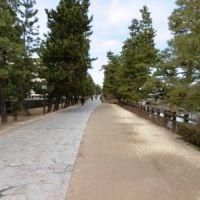草加松原遊歩道-「奥の細道」の面影が残る、草加松原