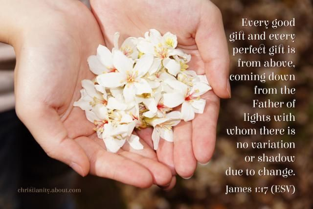 Verse of the Day: Every Perfect Gift - James 1:17