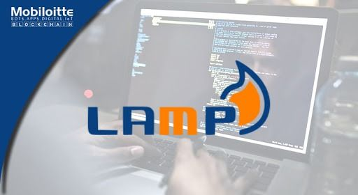 Mobiloitte Is A Trusted Choice Of Clients When It Develops More Advanced Lamp Application Development Compa Development Application Development Web Development