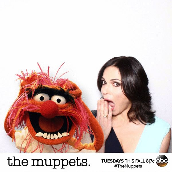 241 Best Muppet Greatness Images On Pinterest: 432 Best Images About Muppets!!!!! On Pinterest