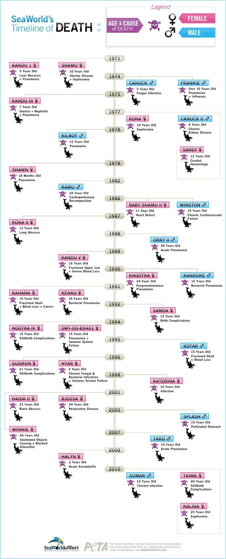 A timeline of Orca whale deaths at SeaWorld between the years of 1971 and 2010.