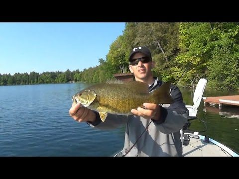 Using Soft Plastic Crayfish for Smallmouth Bass Fishing - YouTube