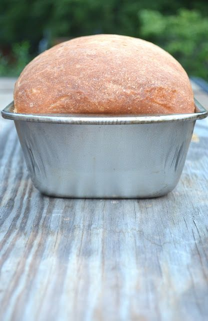 """Wonderful""  AMISH SANDWICH BREAD  ~~~ 6 Simple ingredients make this GREAT, bread! It's soooo easy!"