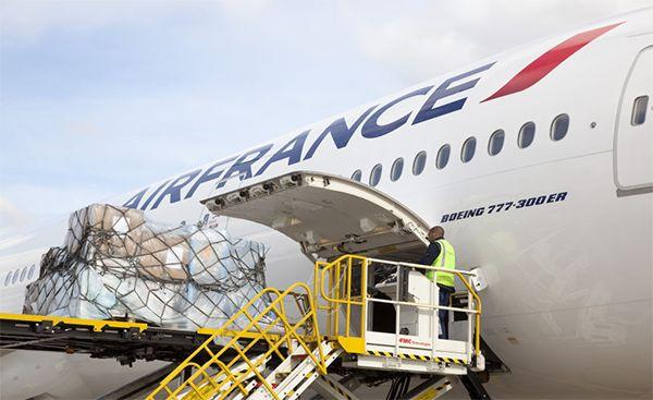 """A Air France Cargo está a implementar uma política de preços """"extremamente agressiva"""" numa tentativa de inverter a tendência de perdas operacionais registada ao longo dos últimos anos."""