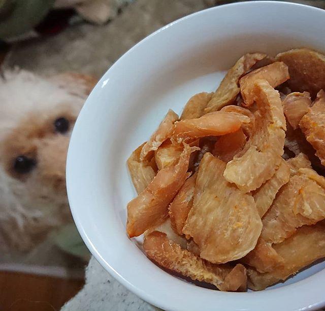 黄金色ジャーキーさん出来たよ~ おまたせ~😅らいふさん💕  #手作りジャーキー #愛犬のおやつ #鳥むね肉  #らいふさん #おまたせしました ♥️#出来ました #愛犬との暮らし #いぬのきもち #犬バカ部 #いぬバカ部 #わんこなしでは生きていけません会 #愛犬 #プードル