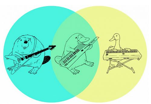 The best Venn diagram you will ever see. | Love your lap life!