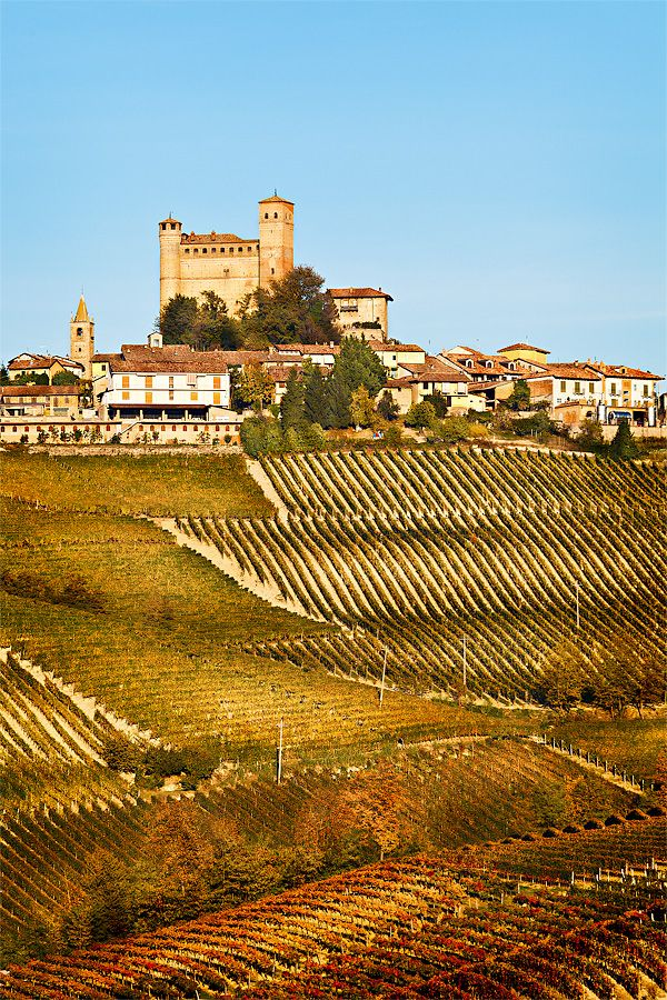 The castle of Serralunga d'Alba (year 1357) is located on the top of the hill in the middle of the village. The area is an hilly countryside called Langhe that is very famous for its wines (Nebbiolo, Barbera, Barbaresco, etc.), cheeses, and the white truffles of Alba.