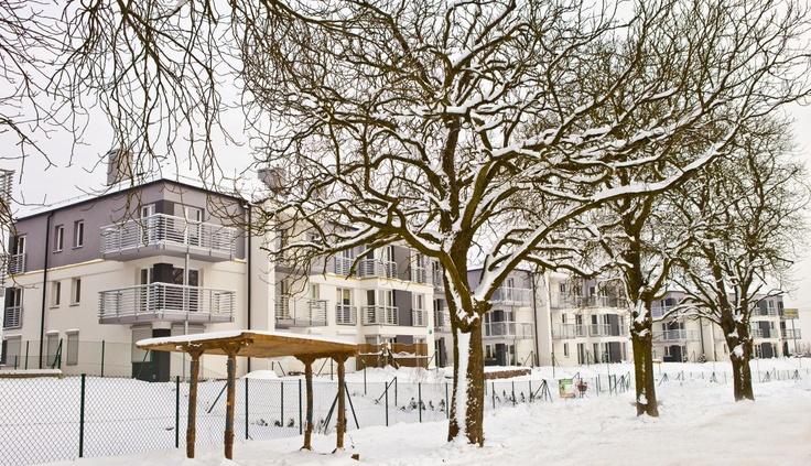 Male Blonia Estate #Winter