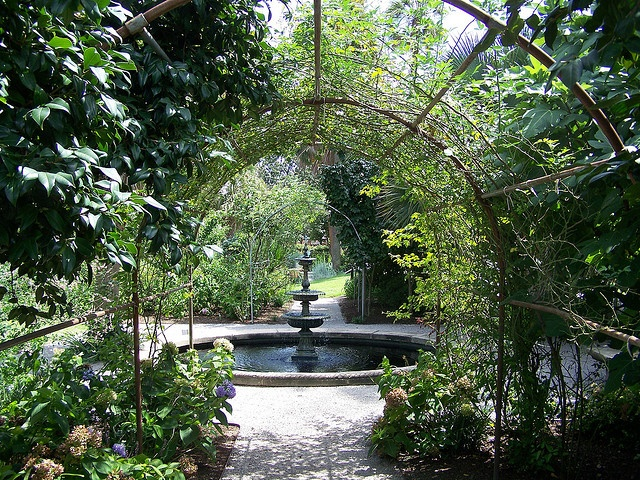 Our Wedding Venue Seibels House And Garden In Columbia Sc This Fountain Was