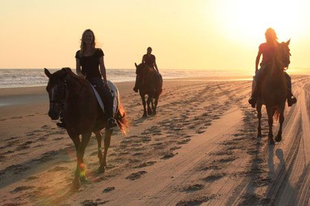5 Reasons to Go to the Outer Banks, North Carolina   Fodor's