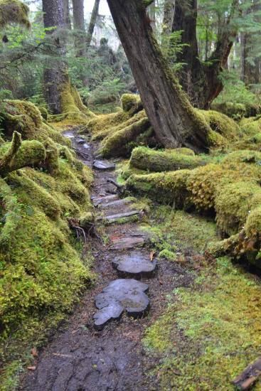Adventures In Haida Gwaii | GreatOutdoors.com