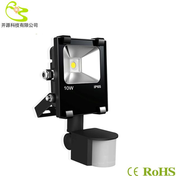 38 best led outdoor light images on pinterest free shipping led new 2014 10w cob infrared led flood light induction ip65 waterproof 1000lm 85 265v motion aloadofball Image collections