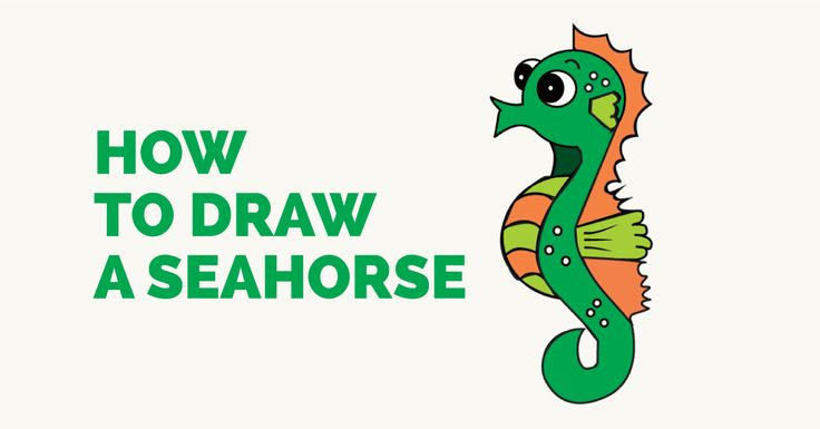 1000 ideas about seahorse drawing on pinterest how to for How to draw a simple seahorse