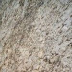 Granite Countertops Warehouse in Charlotte NC | MC Granite Charlotte
