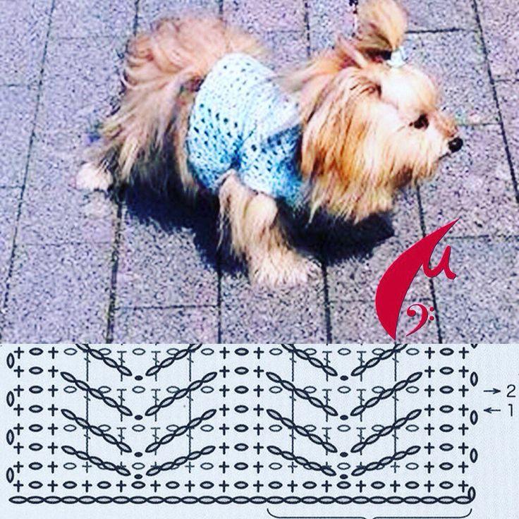 #схема #воплощение #схемакрючком #вязание #одеждадлясобак #костюмкрючком #хлопок #крючком #узордляхлопка #схемадлякрючка #крючком #узор #узоркрючком #крючком #крючок #одежда #собака #животное #крючкомпучком  #dog #crochet #schem #patten #crochetpattern #костюмсобачке #собачка #минимода