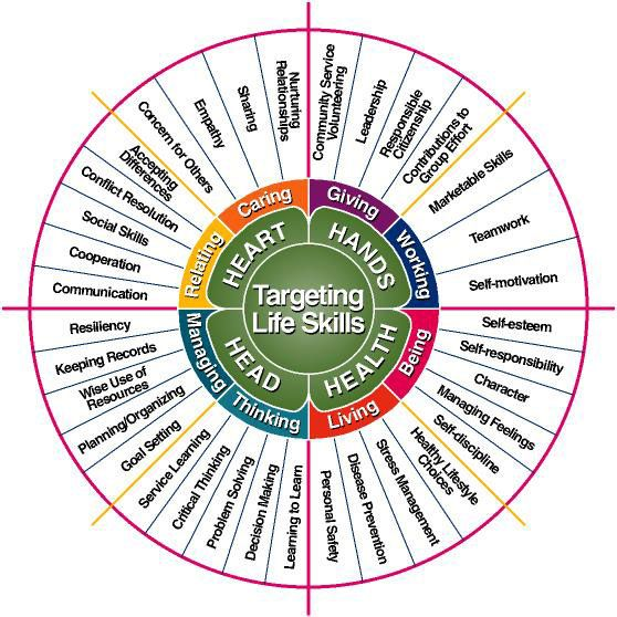 Life Skills are so important - this image is helpful but the website it links to doesn't seem to be about counseling.