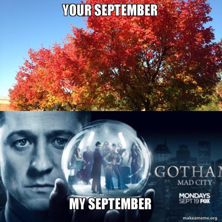 Gotham TV Writers (@GothamTVWriters) | Twitter